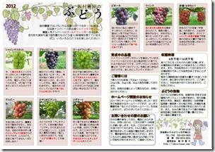 ぶどうチラシ2012