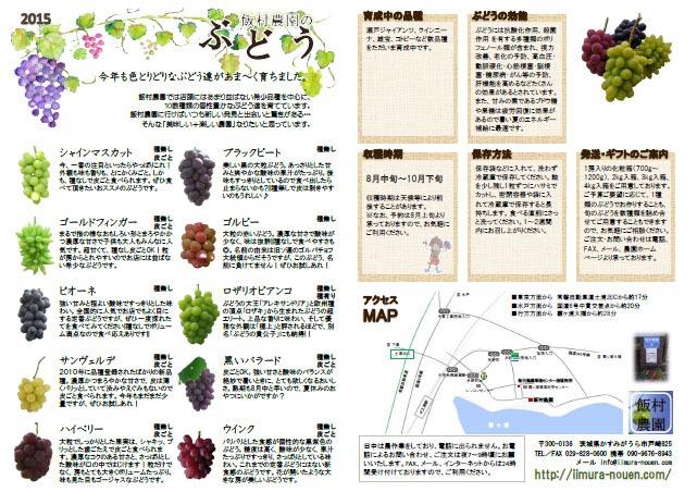 ぶどうチラシ2015